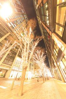 東京仲通りのイルミネーションの写真・画像素材[944176]