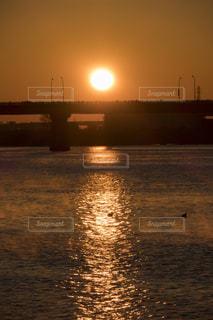 日の出を迎える川に浮かぶ鳥の写真・画像素材[946276]