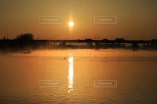 朝陽を浴びて霧の中を羽ばたく鳥の写真・画像素材[975628]