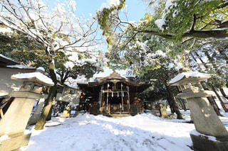 雪に覆われた神社の写真・画像素材[975949]