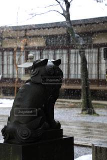 雪降る境内を見守る狛犬の写真・画像素材[991194]
