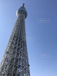 見上げる東京スカイツリーの写真・画像素材[994798]