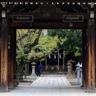 神社の境内の写真・画像素材[1767447]