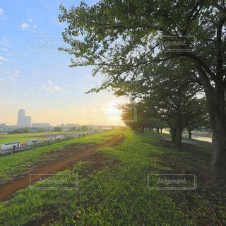 日の出を迎える河川敷の写真・画像素材[1768151]