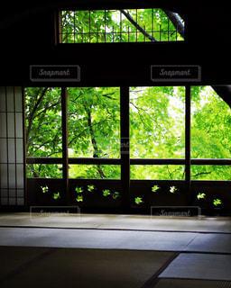 窓から光が入る和室の写真・画像素材[1775328]
