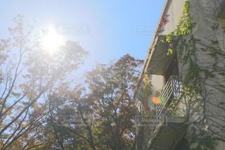 陽射しのあたる窓の写真・画像素材[1785159]