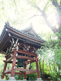寺の鐘の写真・画像素材[1790457]