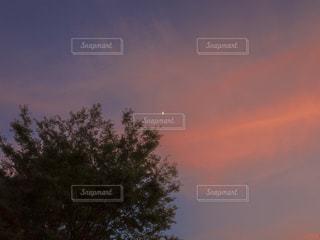 夕暮れに見える三日月の写真・画像素材[1793645]