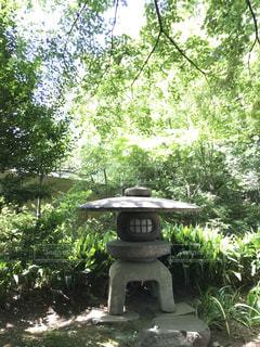 庭園にある石灯籠の写真・画像素材[1794541]