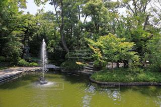 池と噴水の写真・画像素材[1795940]