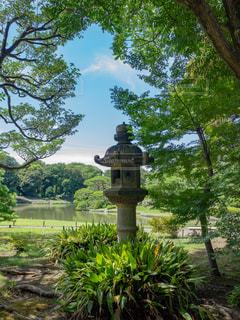 庭園にある灯籠の写真・画像素材[1798480]