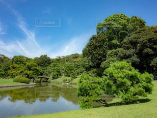 池ある庭園の写真・画像素材[1798483]
