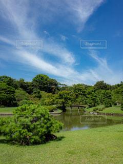 広大な庭園の写真・画像素材[1798484]