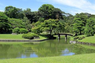 庭園風景の写真・画像素材[1803641]