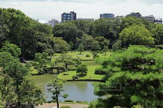 池ある庭園の写真・画像素材[1812946]