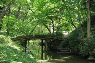 川の上の橋の写真・画像素材[1813456]