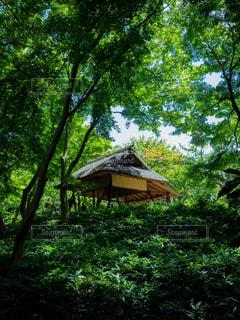 庭園内の休み所の写真・画像素材[1813459]