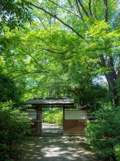 庭園入口の写真・画像素材[1814653]