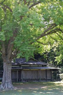 雨戸閉めた家の写真・画像素材[1814659]