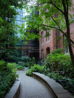 都会の庭園の写真・画像素材[1828402]