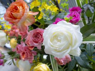 薔薇の花束の写真・画像素材[2144544]