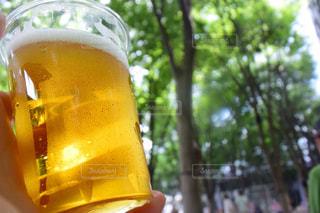 ビールの写真・画像素材[739500]
