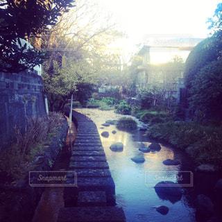 川のうえを歩くの写真・画像素材[737987]