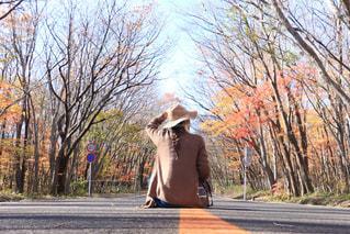 紅葉 - No.933759