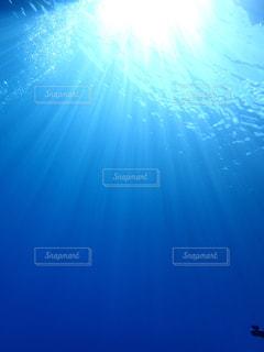 海底の写真・画像素材[739077]