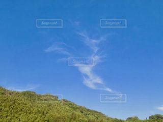 大規模なグリーン フィールドの写真・画像素材[740666]