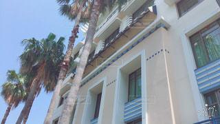 建物の側面にあるヤシの木のグループの写真・画像素材[739684]