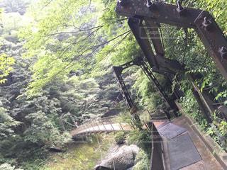 袋田の滝の橋 - No.742285