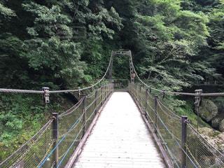 袋田の滝側の橋の写真・画像素材[742286]