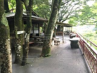 袋田の滝 食事処の写真・画像素材[742288]