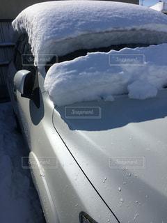 雪に覆われた車の写真・画像素材[978613]