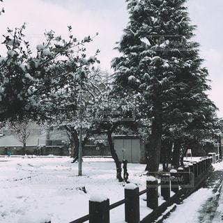 公園の雪の屋根付きベンチの写真・画像素材[740093]