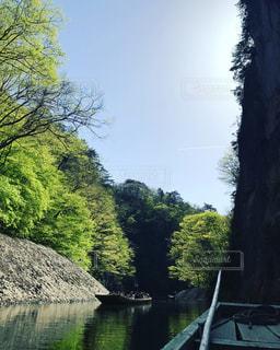 木々 に囲まれた水の体中の小型船の写真・画像素材[740180]