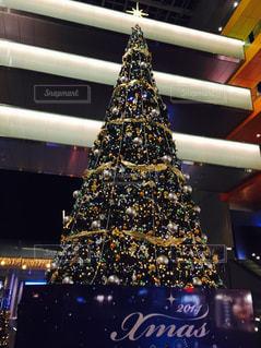 クリスマスツリーの写真・画像素材[741220]
