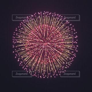 夜空の花火の写真・画像素材[740744]