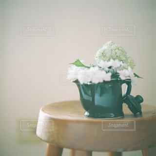 日々の生活に花を。の写真・画像素材[752267]