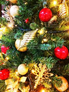クリスマスツリーの飾りの写真・画像素材[2648482]