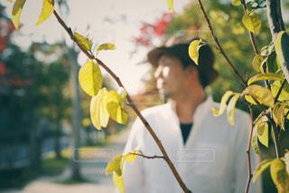 樹木と帽子をかぶった横顔の男性の写真・画像素材[2681345]