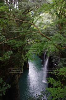 水の体の上の大きな滝の写真・画像素材[845245]
