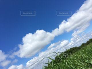 空には雲のグループの写真・画像素材[845251]