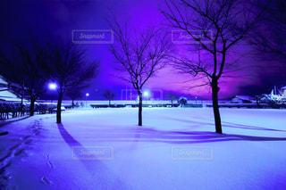 紫の夜 - No.742748
