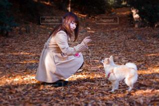 犬と散歩をする女性 - No.743132