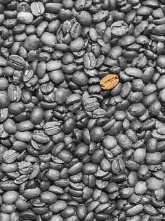 コーヒー豆 - No.836540
