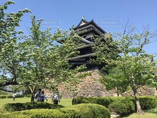 青空の下、松江城の写真・画像素材[797955]