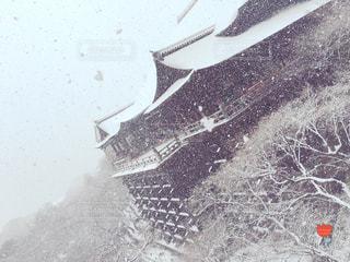雪の清水寺3の写真・画像素材[743163]