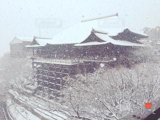 雪の清水寺2の写真・画像素材[743164]